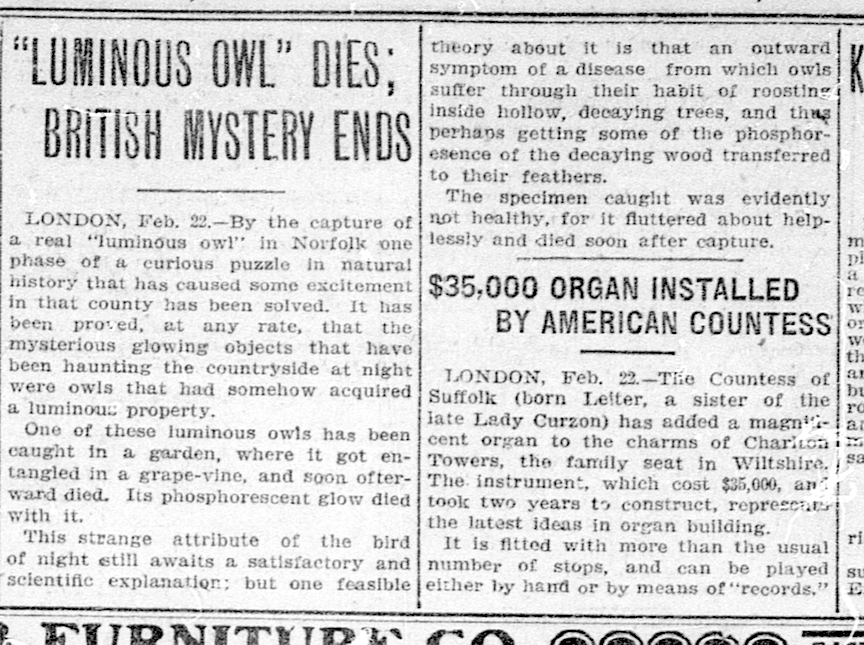 Luminous owl - The Washington Times February 23, 1908.png